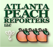 Court Reporting Services by Atlanta Peach Reporters, LLC - logo